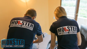 Monster Cleaning Cheshunt